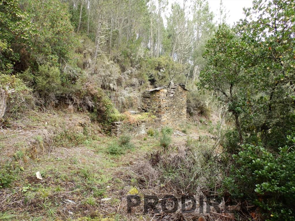 riverside valley for sale