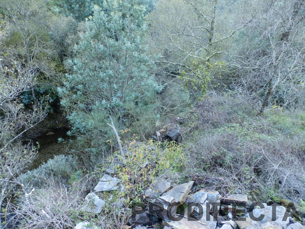 riverside, peace of land, 4 acres, pine, terraces, flat land, riverside shore, property, water from a spring, pure water, runs all year round, old schist shed, open views,
