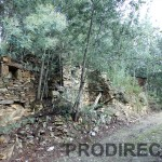 Farm with spring water for irrigation in Góis - PD0019 * No loguer for sale*