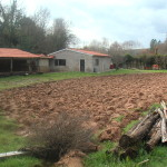 Smallholding for sale in Arganil - PD0004