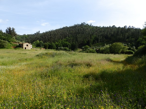 land in portugal for sale