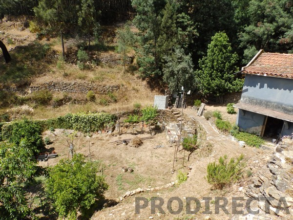 Small farm for sale in Góis