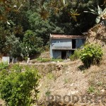 Small farm for sale in Góis - PD0136 - NO LONGER FOR SALE