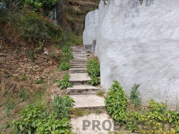 Small farm for sale in Góis