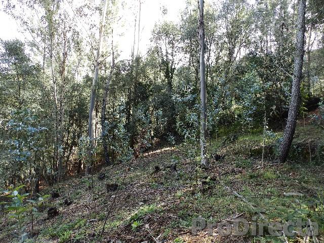 Quinta in excellent location in Gois