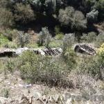 Farm in the Góis region - PD0157
