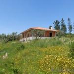 New Villa Coja - PD0169