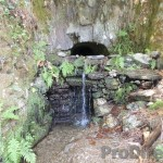 Quinta Fonte Salgueiro - PD0188