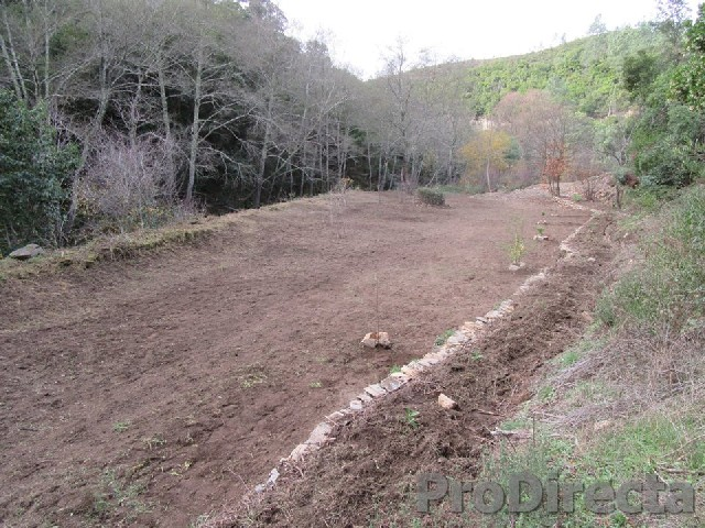 Off grid property