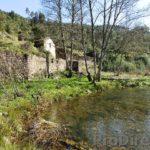 Riverside farm with registered habitation - PD0211 - **SOLD**