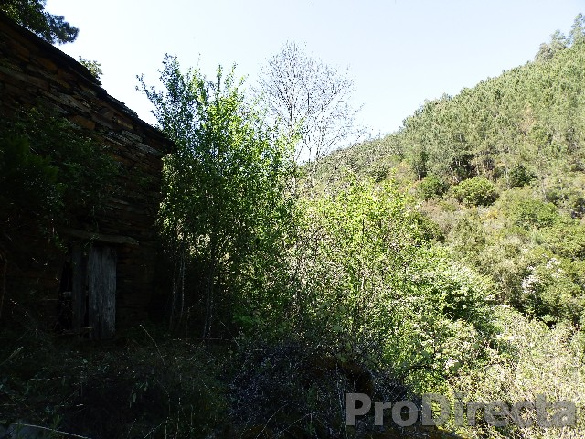 Rural farm in Vale da Sobreira Góis