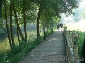 Gois River Walkway