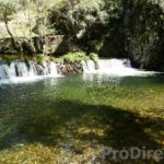Latest properties for sale in central portugal