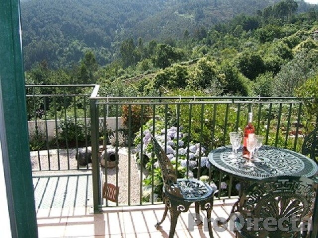 12. View from the Rear terrace