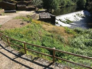 Terreno da Ponte