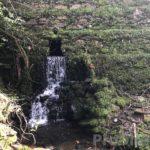 Vale da Galinha - PD0332 *PRICE REDUCED*