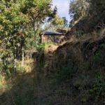 Quinta da Odrezinha  - PD0359 **SOLD**