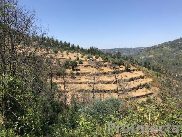 Quinta das Figueirinhas
