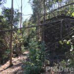 Quinta do Fernando - PD0416